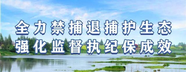 「要闻」南县高质高效推进省委第二巡视组交办的第三批信访案件办理工作插图1